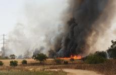 حريق قرب مطار بن غوريون.jpeg