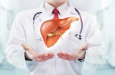 امراض الكبد.jpg