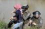 اعتقال فلسطينية.png